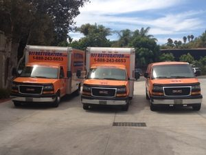 Water Damage and Mold Removal Vehicles At Commercial Job Location