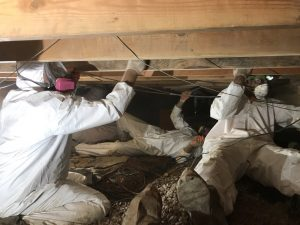 Water Removal Technicians in the Crawlspace