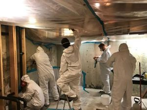 Water Damage Team Conducting Water And Mold Removal Services