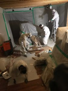 Water Damage and Mold Cleanup Services