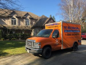 Mold Removal Services in Riverside